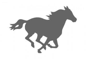 360x250 Horse Craft Shapes