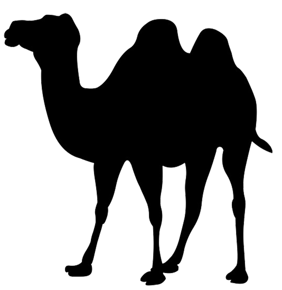 919x945 Clipart Camel Silhouette