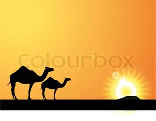 320x249 CAMEL silhouette Stock Vector Colourbox