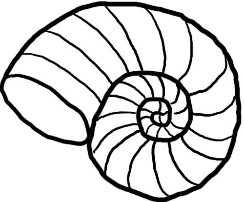 Nautilus Silhouette