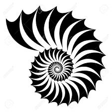 225x225 Imagini Pentru Geometrie