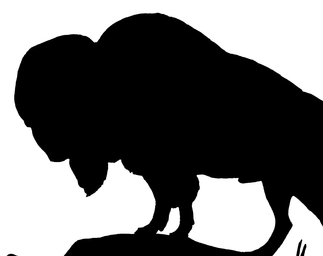 1320x1044 Vintage Buffalo Silhouette Image!