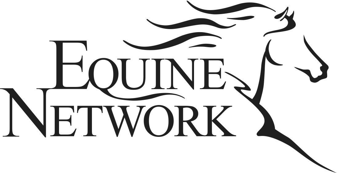 1096x565 Equine Network Horses Horse Training And Horse