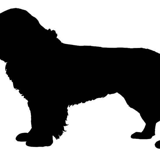 Pomeranian Silhouette At Getdrawings Com Free For