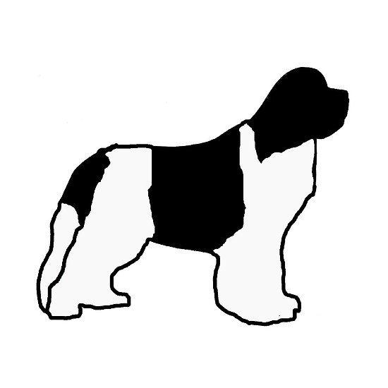 550x550 79 Best Newfoundland Images On Newfoundland Dogs, Dogs