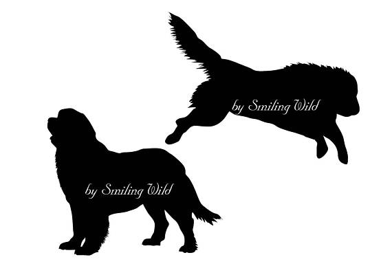 570x403 Newfoundland Svg Silhouette Cut File Newfoundland Dog Printable