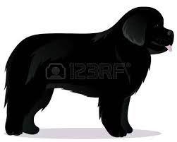 251x201 Resultado De Imagen Para Newfoundland Dog Silhouette Newforland