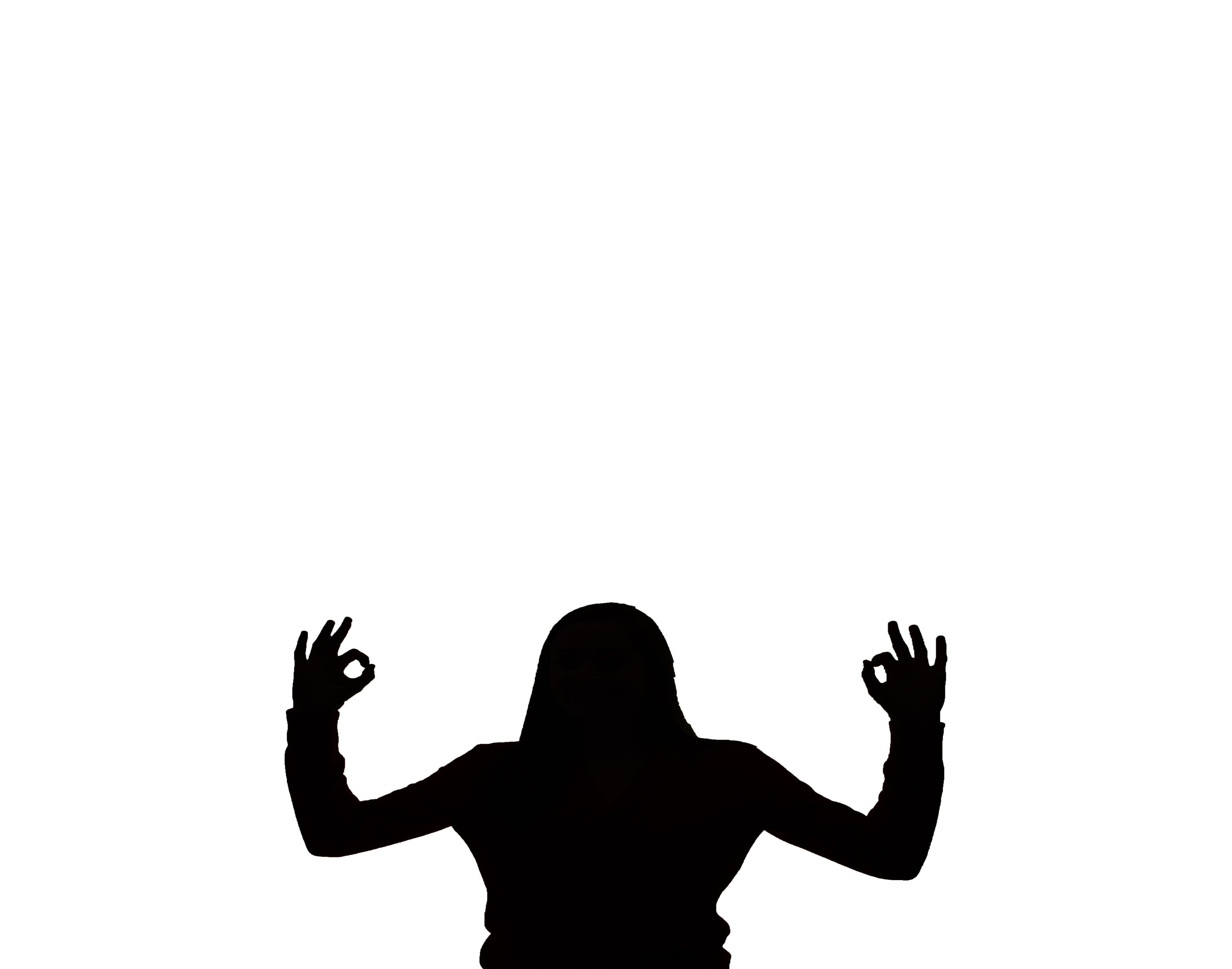 2926x2301 I Used This Silhouette Project To Take A Picture Of Myself And Put