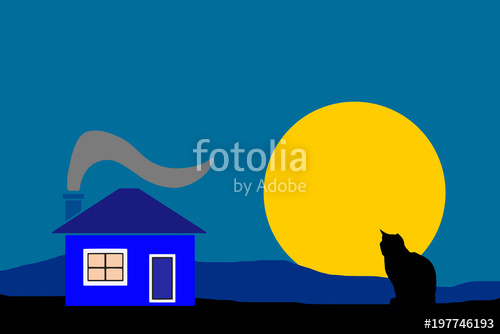 500x334 Night Country House With Black Silhouette Cat Vector