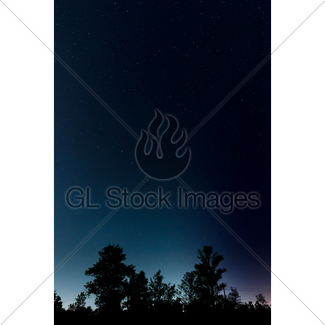 325x325 Horizontal Peaceful Starry Night Sky With Xmas Tree Gl Stock Images