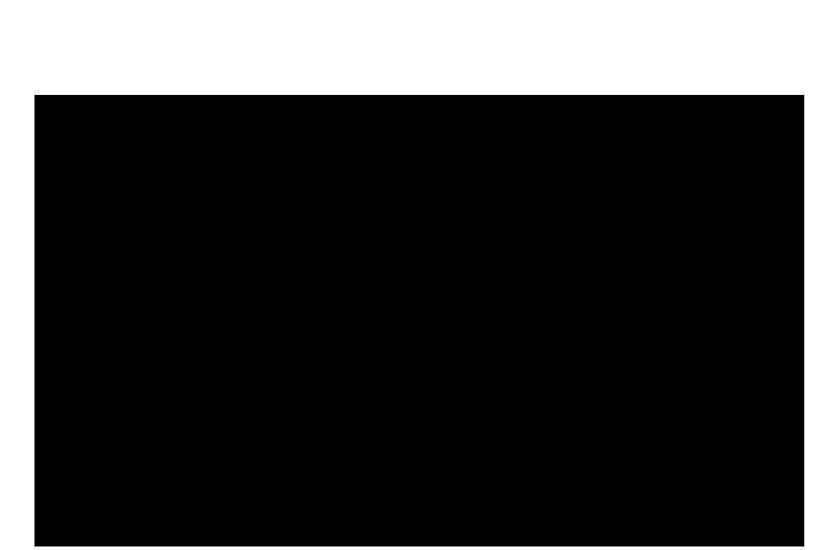 1181x782 Polar Bear Clipart Clear Background