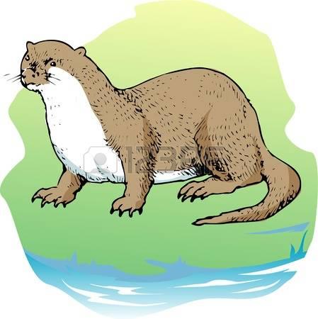 449x450 Weasel Clipart River Otter 4049087