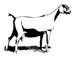 236x205 Nubian Milk Goat Silhouette