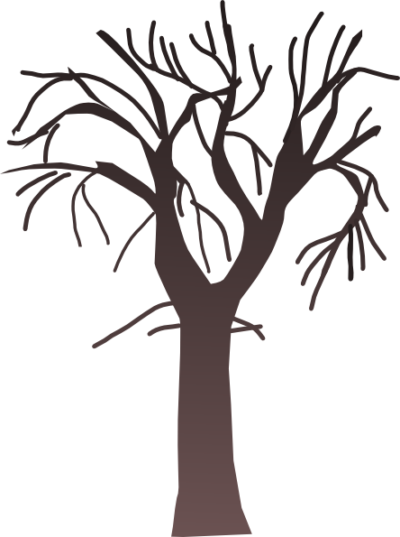444x595 Silhouette Tree Branches