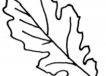 Oak Leaf Silhouette