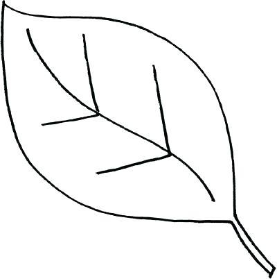 400x402 Oaks White Oak Leaf Silhouette Oak Tree Leaf Outline