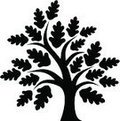 135x137 Oak Tree Silhouette Stock Vectors