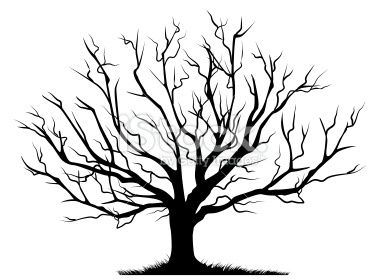 380x280 Deciduous Bare Tree With Empty Branches Black Silhouette Isolated
