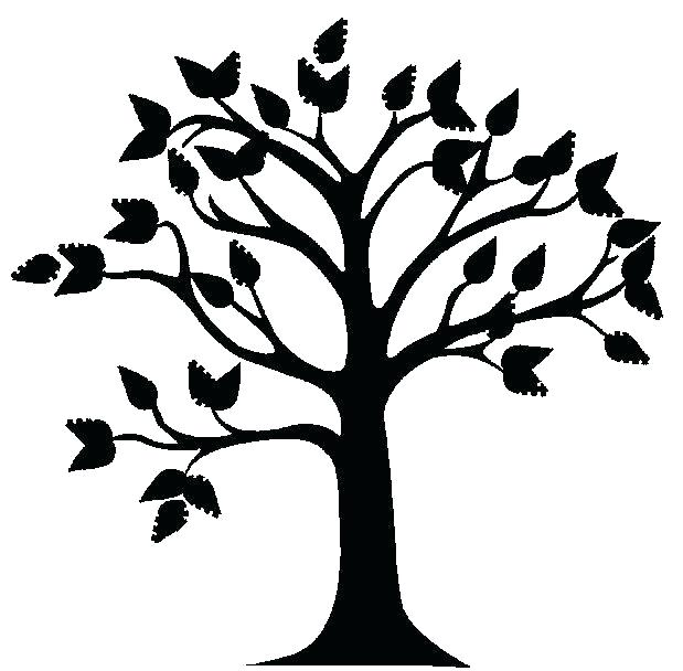 619x608 Oak Tree Outline Oak Tree Silhouette Free Oak Tree Silhouette Clip