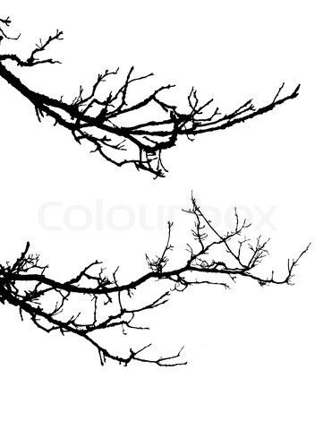 Oak Tree Silhouette Tattoo