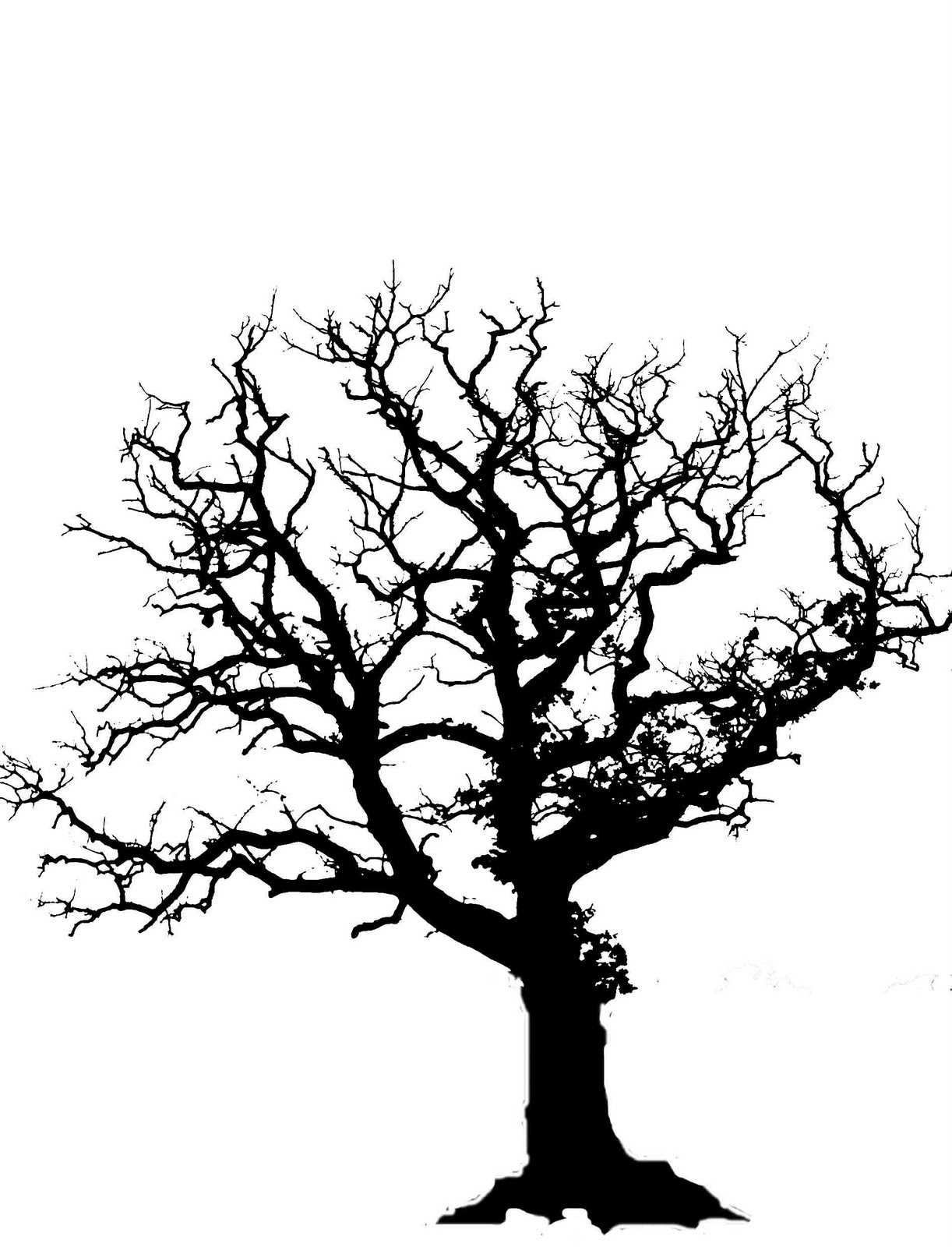 1222x1600 Old Oak Tree Drawing Tree Silhouettes Not Know How To Draw Trees