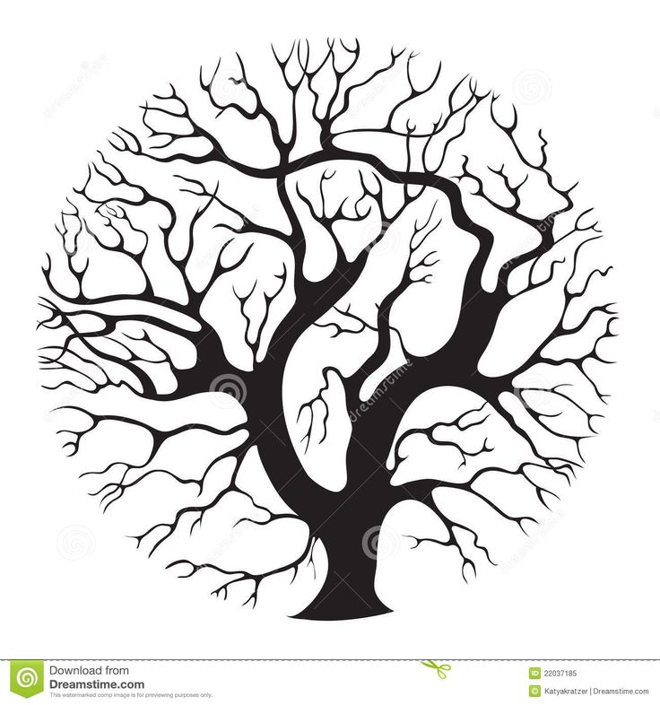 736x786 239 Best Trees Images On Cricut, Tree Of Life