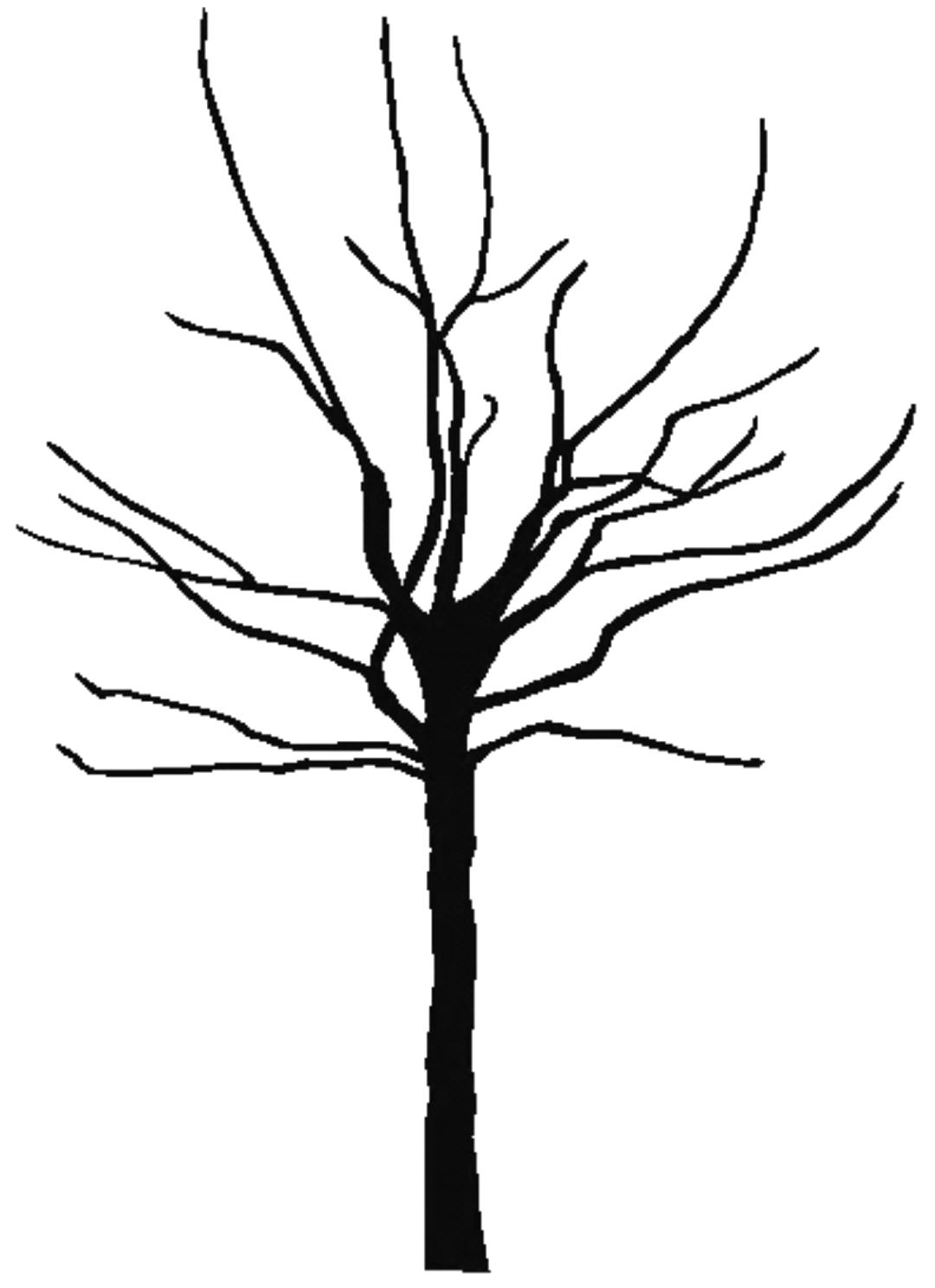 1080x1488 Bare Oak Tree Clipart