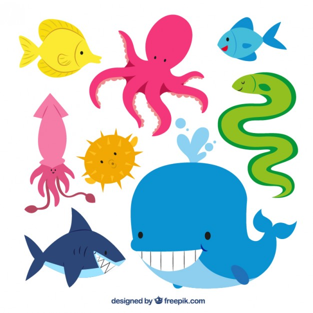 626x626 Cute Sea Animals Vector Free Download