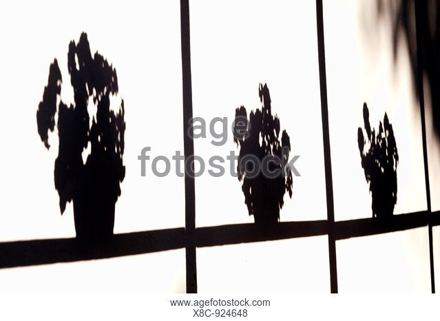639x466 Nograd Stock Photos And Images Age Fotostock