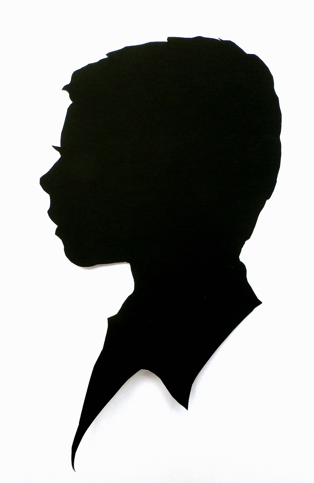 1000x1539 Silhouettes By Hand Examples