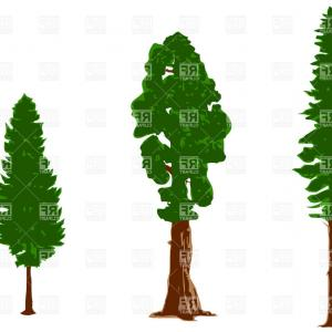 300x300 Old Tree Silhouettes With Roots Vector Clipart Createmepink