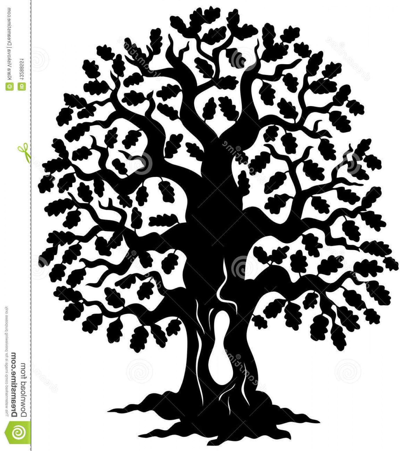 1382x1560 Stock Image Oak Tree Silhouette Image Createmepink