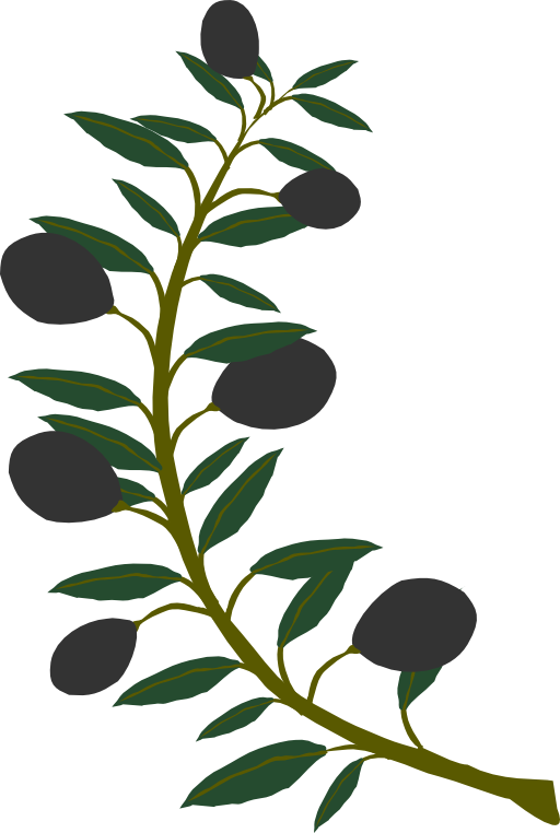 512x762 Olive Branch Black Olive Clipart I2clipart