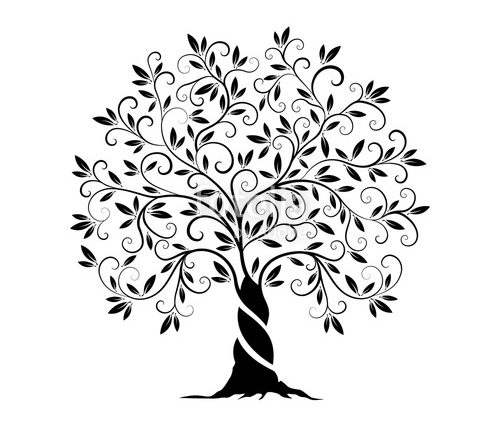 500x425 Olive Tree Stencil Olive Tree Outline Curl Silhouette Stock Image