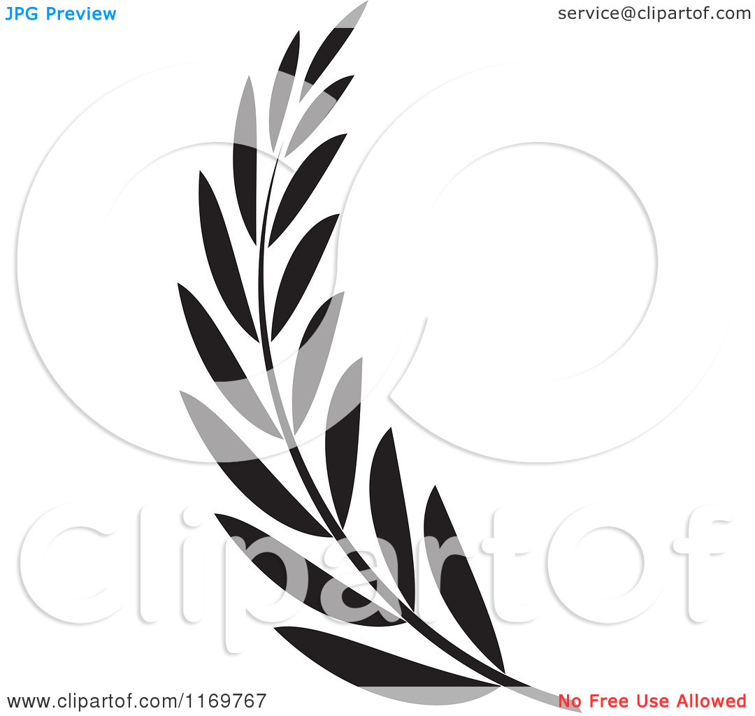 1080x1024 Branch Clipart Black Olive Many Interesting Cliparts