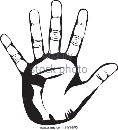493x540 Hand Palm Illustration Stock Photos Amp Hand Palm Illustration Stock
