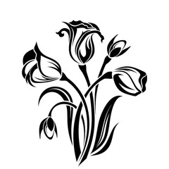 240x240 Black Silhouette Of Orchid Flowers. Vector Illustration.