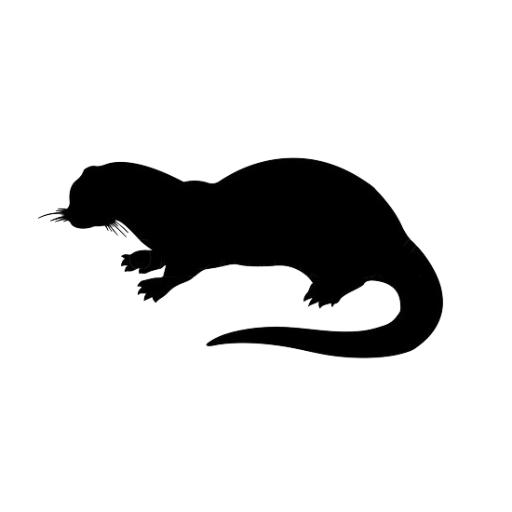 512x512 Otter Potter (@otterpotterpics) Twitter