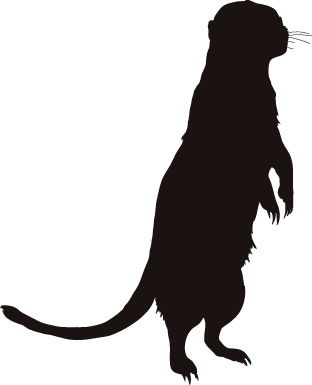 312x385 50 Animal Models And Silhouette Vector Free Vector 4vector