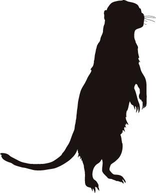 Otter Silhouette Vector