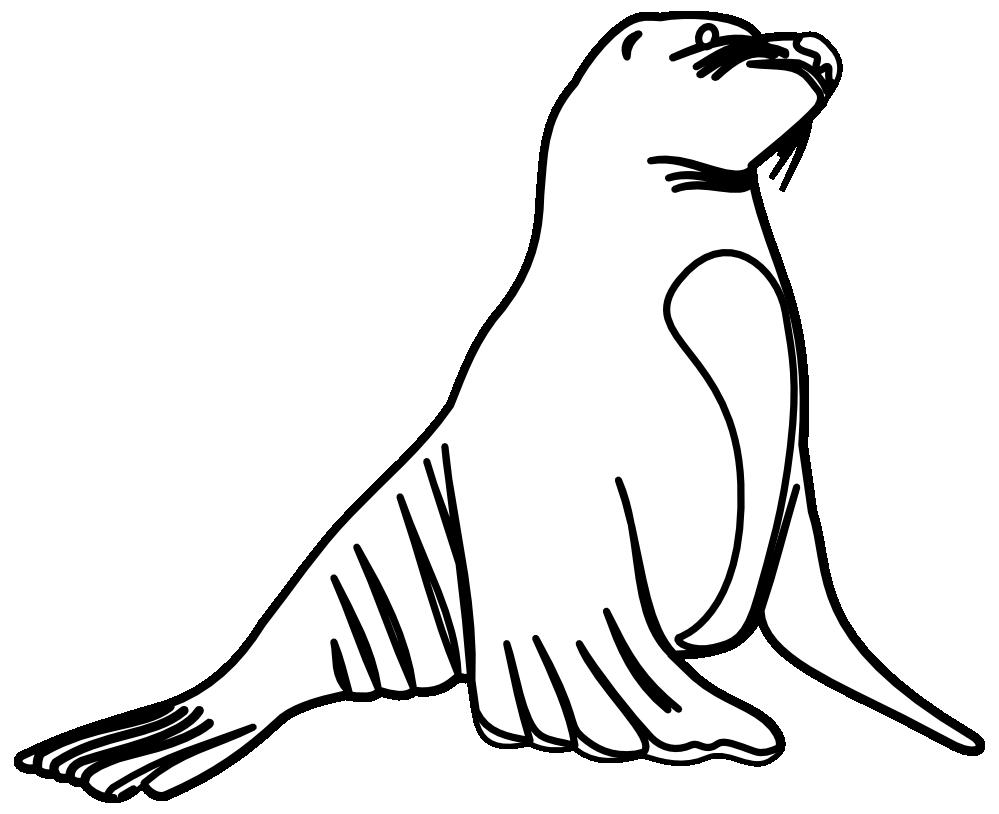 999x814 Sea Otter Clipart Nutria