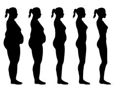 236x186 Vector Fat Body, Weight Loss, Overweight Silhouette Illustration
