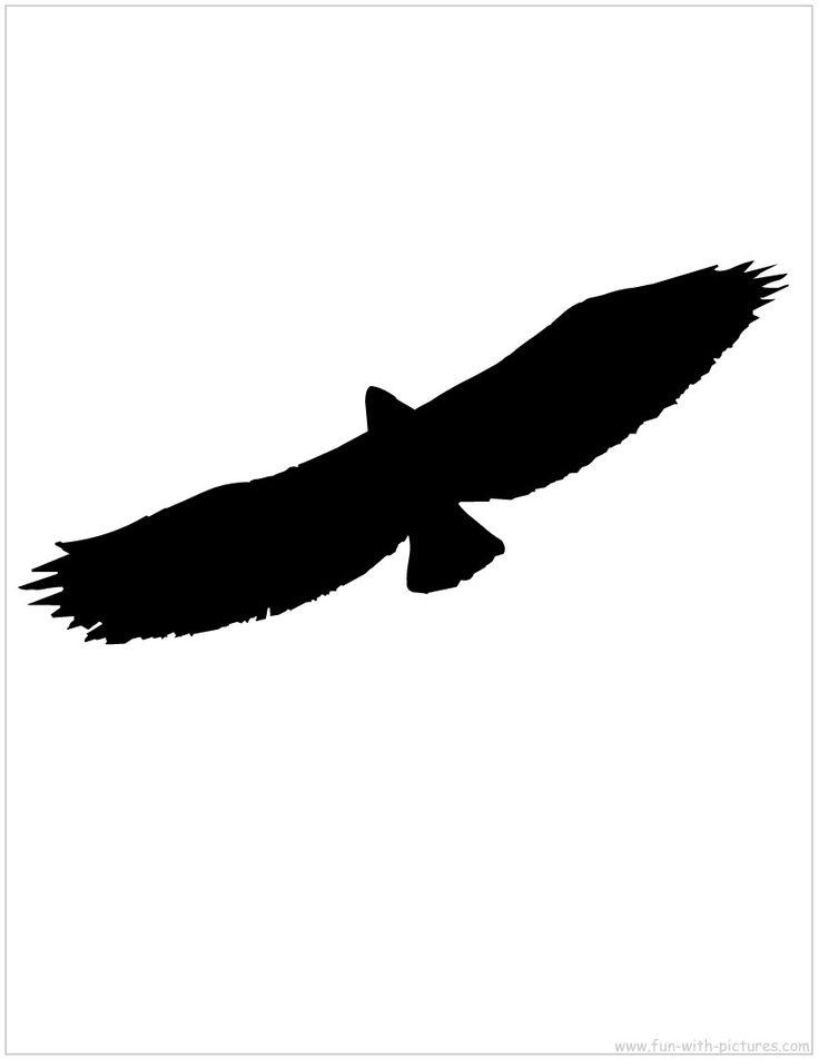 736x952 Golden Eagle Clipart Bird Shadow