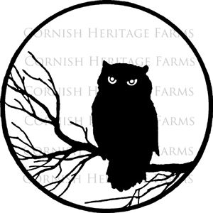 300x300 Owl Silhouette, Cute To Yudu On A Shirt For My Origami Owl Jewelry