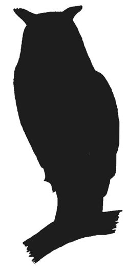 250x531 Owl Silhouette Halloween Owl Silhouette