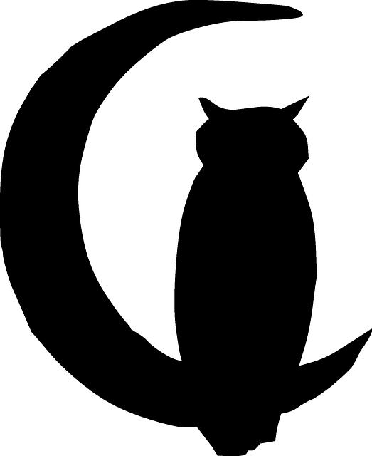 523x640 Black, Outline, Moon, Silhouette, Cartoon, Bird, Owl Silhouettes