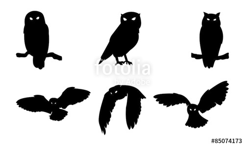 500x299 Owl Bird Silhouette Stock Image And Royalty Free Vector Files