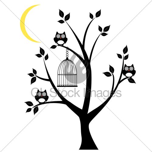 500x500 Owl Tree Gl Stock Images