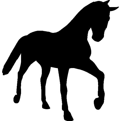 512x512 Silhouettes Icon