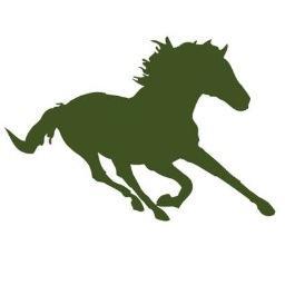 256x256 Bellprairie Mustang (@bp Mustangs) Twitter